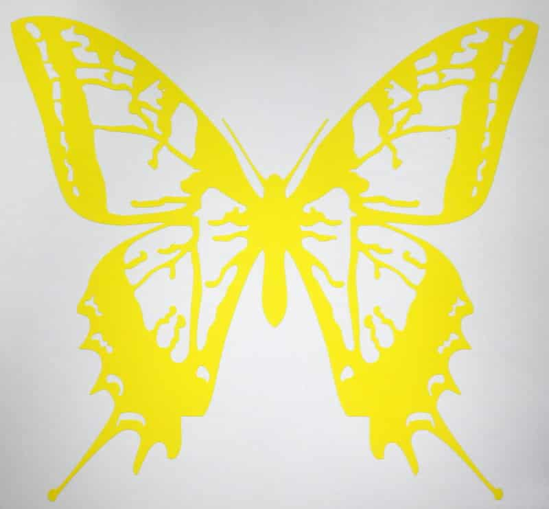 graphic about Papilio Printable Vinyl named erfly-dazzling-yellow-vinyl-minimize-decal-sticker -