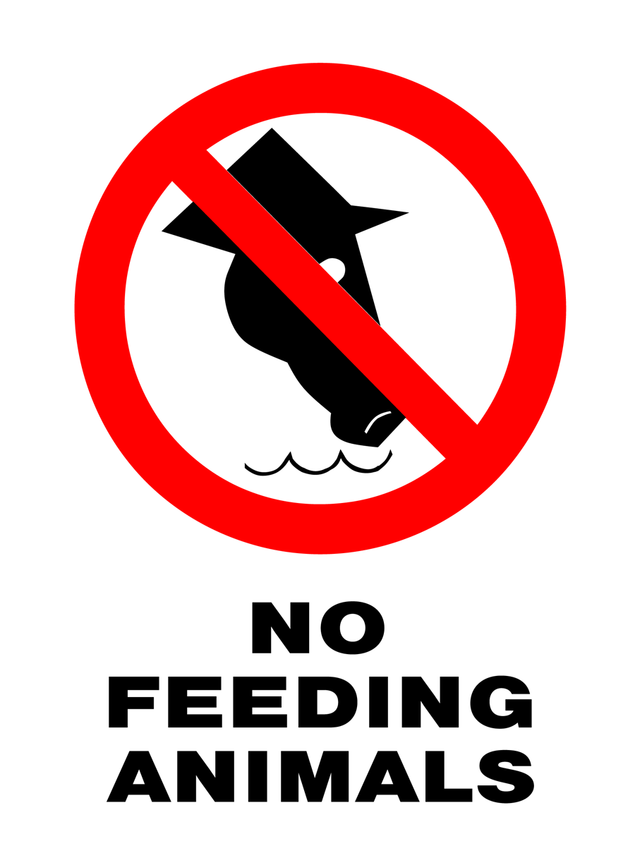 Prohibition - No Feeding Animals