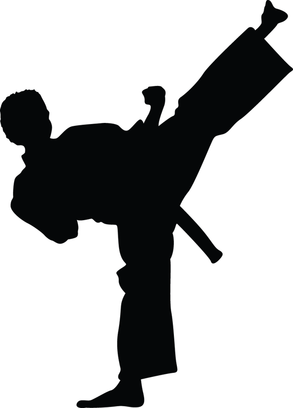Karate Kid Kick In Air Silhouette