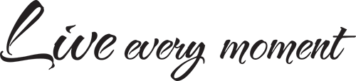 Live Every Moment Vinyl Cut Decal