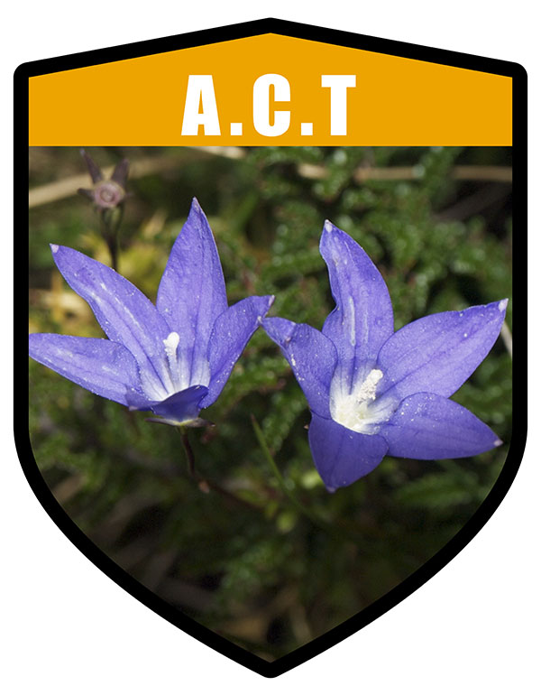 ACT State Flower Royal Bluebell Shield
