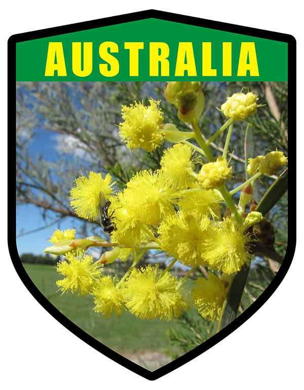 AU Golden Wattle