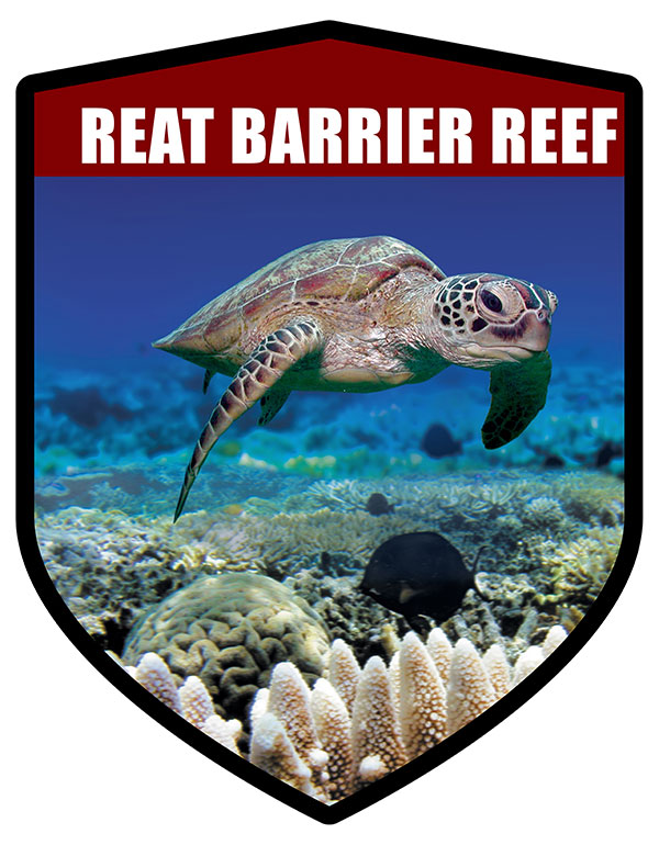 QLD Shield Great Barrier Reef Turtle