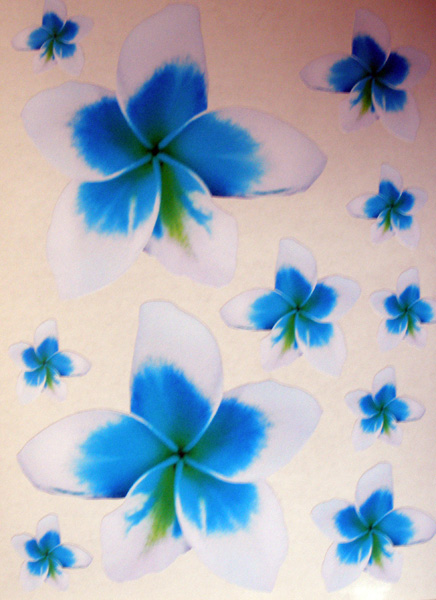11 Frangipani Stickers Blue