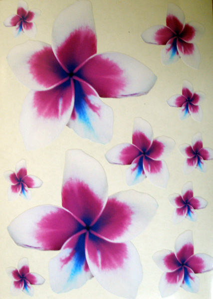 11 Frangipani Stickers Purple