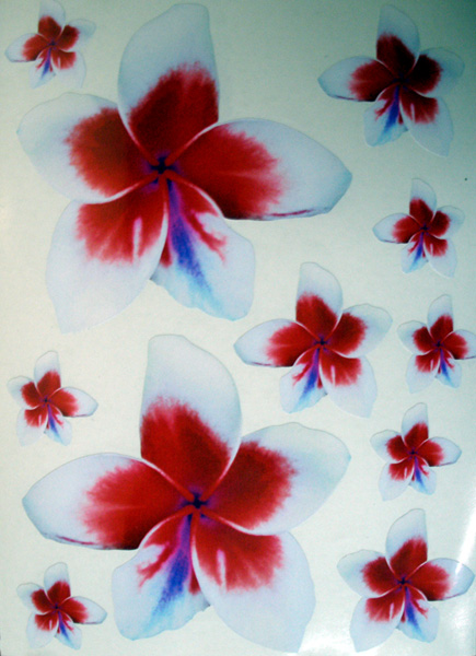 11 Frangipani Stickers Red