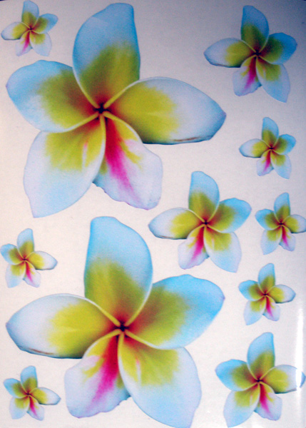 11 Frangipani Stickers Yellow