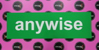 Custom Printed Anywise Business Car Magnet