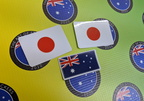 Catalogue Printed Contour Cut Die-Cut Japanese Flags Vinyl Stickers